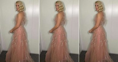 Holly Willoughby's pink feathered Dancing on Ice gown is total showstopper