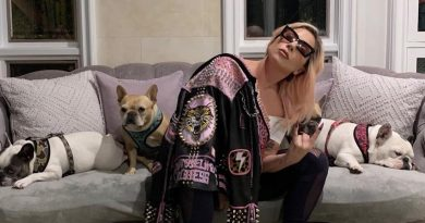 Joe Germanotta, Lady Gaga's dad, speaks out following stolen dogs incident